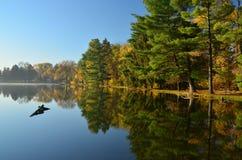 Quatre lacs Forest Preserve photographie stock libre de droits