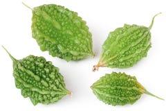 Quatre melon ou momordica amer vert d'isolement sur le fond blanc Image libre de droits