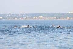 Quatre motos masculines et de tour de l'eau dedans Photos stock