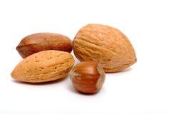 Quatre noix différentes Image libre de droits