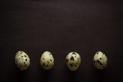 Quatre oeufs de caille dans une rangée Image libre de droits