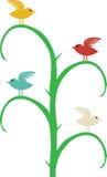 Quatre oiseaux différents de couleur se reposent sur l'arbre curvy illustration stock