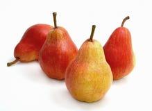 Quatre poires rouges Images libres de droits