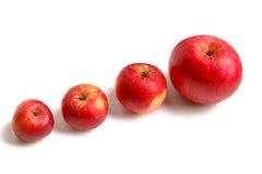 Quatre pommes Images libres de droits