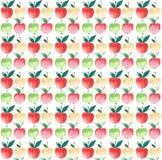 Quatre pommes rouges juteuses lumineuses de vert jaune modèlent le croquis de main d'aquarelle Image libre de droits