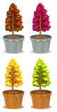 Quatre pots d'usines Image stock