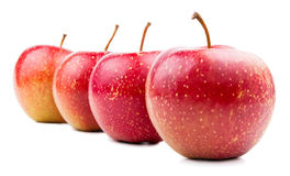 Quatre rouge Apple d'isolement Image stock