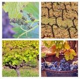 Quatre saisons en Provence Images libres de droits