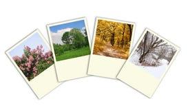 Quatre saisons jaillissent, été, automne, photo de l'hiver Photos stock