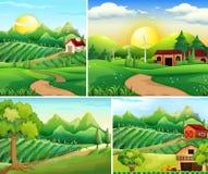 Quatre scènes de fond de basse cour illustration libre de droits
