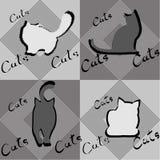 Quatre silhouettes des chats dans différentes poses Photographie stock libre de droits