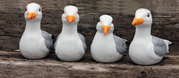 Quatre statues toutes de mouette dans une rangée Image libre de droits
