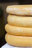 Quatre têtes de plan rapproché de fromage de chèvre Images libres de droits