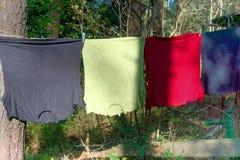 Quatre T chemises dans différentes couleurs sur une corde à linge avec de vieilles pinces à linge laides bleues entre deux pins d images libres de droits