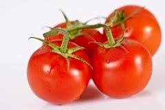 Quatre tomates Photo libre de droits