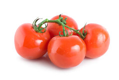Quatre tomates mûres Photos stock