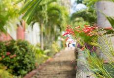 99 étapes célèbres Charlotte Amalie Photographie stock libre de droits