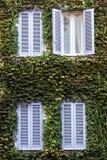 Quatre Windows Façade de bâtiment entièrement couverte de lierre photographie stock
