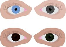 Quatre yeux différents de couleur Photo libre de droits