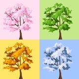 Quatro árvores da estação. Fotografia de Stock