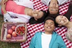 Quatro amigos novos de sorriso com as cabeças que tocam e que encontram-se em suas partes traseiras que têm um piquenique no parqu Imagens de Stock