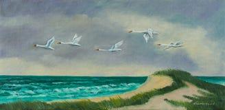 Quatro aves migratórias voam na costa acima do mar ilustração royalty free
