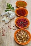 Quatro bacias com açafrão, pimenta, hanout do en dos ras, hortelã fresca e Fotografia de Stock