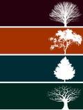 Quatro bandeiras da árvore Imagem de Stock Royalty Free