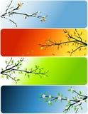 Quatro bandeiras das estações Fotos de Stock Royalty Free
