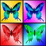 Quatro borboletas Fotos de Stock
