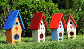 Quatro caixas de pássaro Imagens de Stock