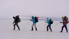 Quatro caminhantes estão andando em se sobre o campo de neve no dia de inverno frio, ajudando a se por varas filme