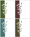 Quatro cartões florais ilustração royalty free