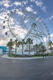 Quatro cem pés de roda de ferris alta Fotografia de Stock Royalty Free