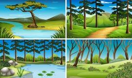 Quatro cenas da floresta e do rio Imagem de Stock