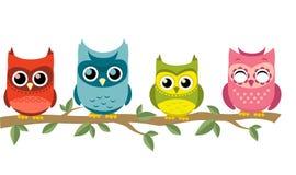 Quatro corujas que empoleiram-se junto Imagem de Stock Royalty Free