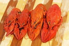 Quatro crawfishes fervidos vermelhos tomados o close up. fotografia de stock