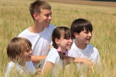 Quatro crianças no campo de trigo fotos de stock royalty free