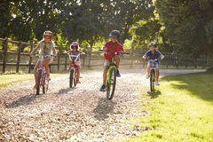 Quatro crianças no passeio do ciclo no campo junto fotos de stock