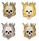 Quatro crânios Fotos de Stock Royalty Free