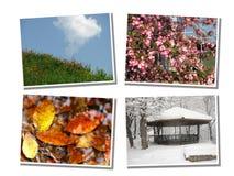 Quatro estações fotos de stock
