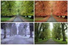 Quatro estações Fotos de Stock Royalty Free