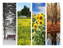 Quatro estações imagens de stock