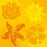 Quatro flores do grunge Fotografia de Stock