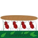 Quatro formigas em equipe ilustração royalty free