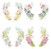 Quatro frames florais ilustração do vetor