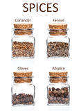 Frascos das especiarias Foto de Stock Royalty Free