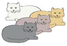 Quatro gatos britânicos coloridos diferentes Imagens de Stock