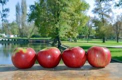 Quatro maçãs A Foto de Stock