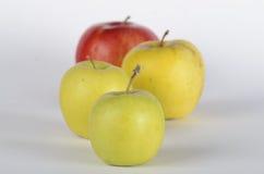 Quatro maçãs Fotografia de Stock Royalty Free